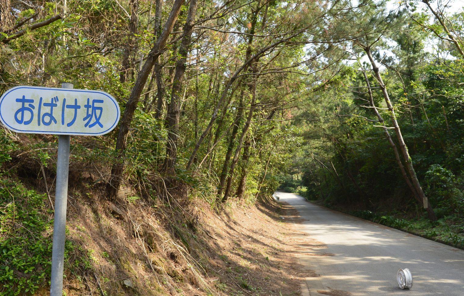 久米島のフォトギャラリー