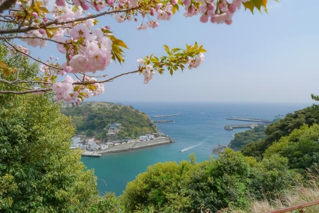 <竹芝桟橋発着>高速ジェット船利用大島3日間「大島温泉ホテル」滞在