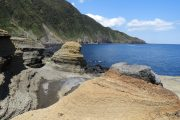 大島のフォトギャラリー