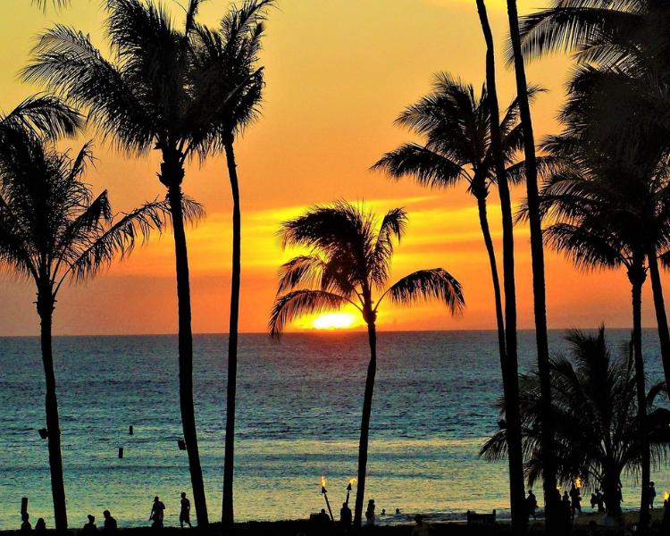 ハワイ 最新出入国 情報